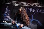 Primordial (Rockharz Open Air 2012)
