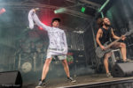 Insanity Alert auf dem Summer Breeze Open Air 2016
